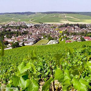 Village de Chablis